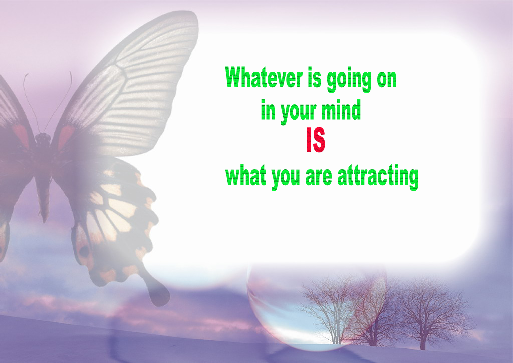Positive Law of Attraction Quotes